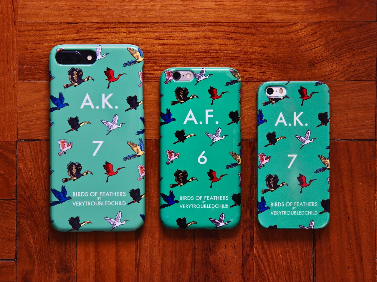 Birds of Feathers iPhone Case